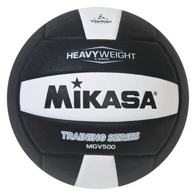 Setter's training volleyball