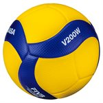 Official FIVB competiton indoor volleyball